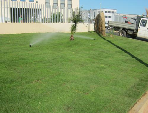 Prato pronto comune di Elmas – ZI Casic (CA) – Poggio dei Pini – Fabbricato industriale