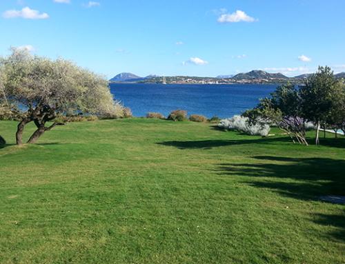 Prato pronto comune di Arzachena (OT) – Costa Smeralda – Villa residenziale